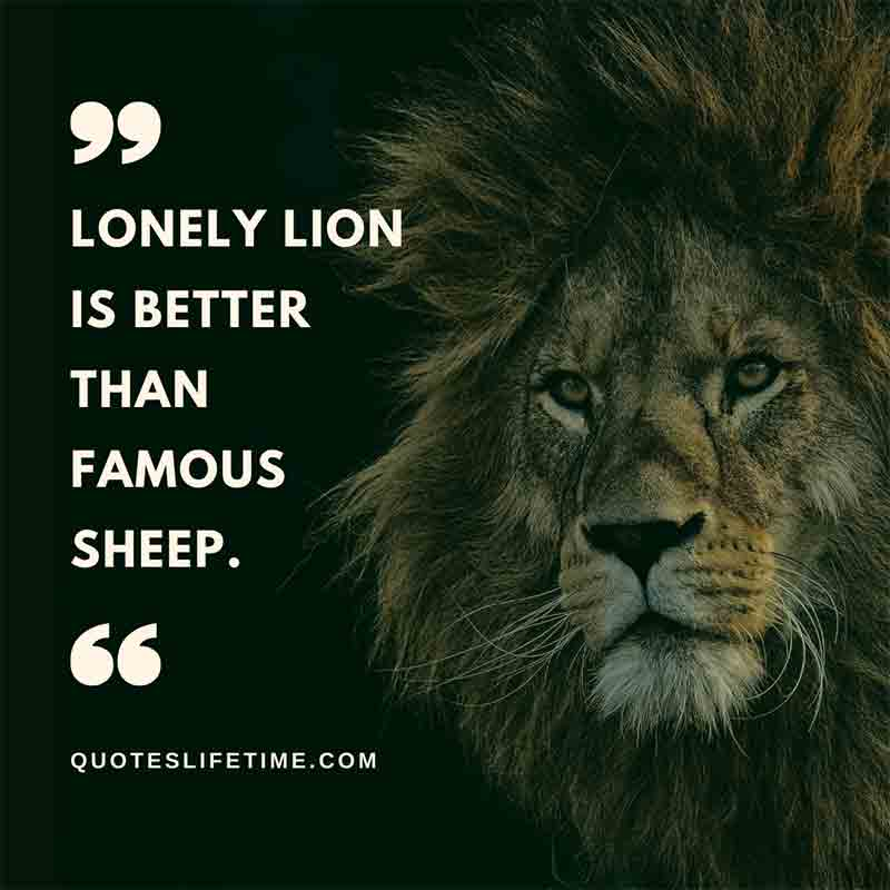 lion quotes and sayings images, Lonely lion is better than famous sheep.